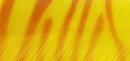 zebra gelb/orange
