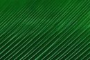einfarbig grün