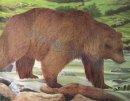 JVD - Tierbildauflage Bear