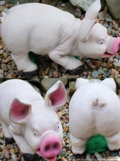 T.C. Targets Porky Pic
