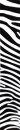 Wraps - Zebra weiß