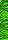 Bohning green/black Tiger 12er Set